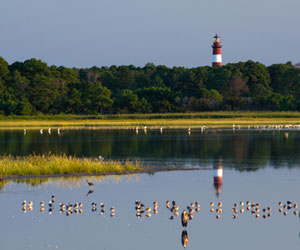 Chincoteague Island, VA Vacation Rentals